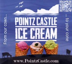 pointzcastle ice cream